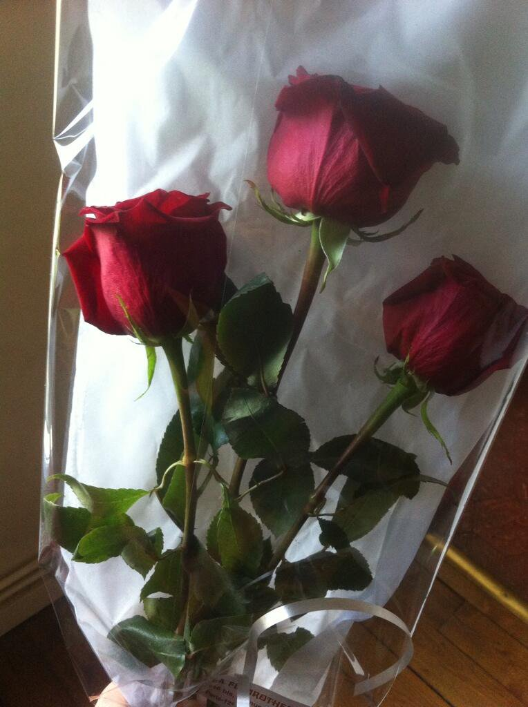 SummerMemoriesStyle (1) - Surprise from my perfect husband
